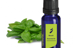 Health benefits of Basil Essential Oil
