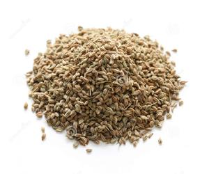 how to get ajwain seeds from ajwain plant