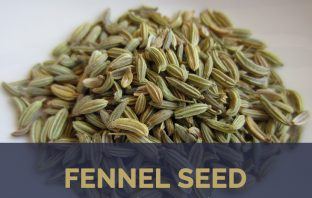 Fennel Seed health benefits