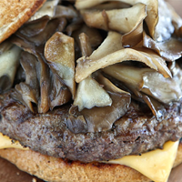 Maitake Mushroom Burger