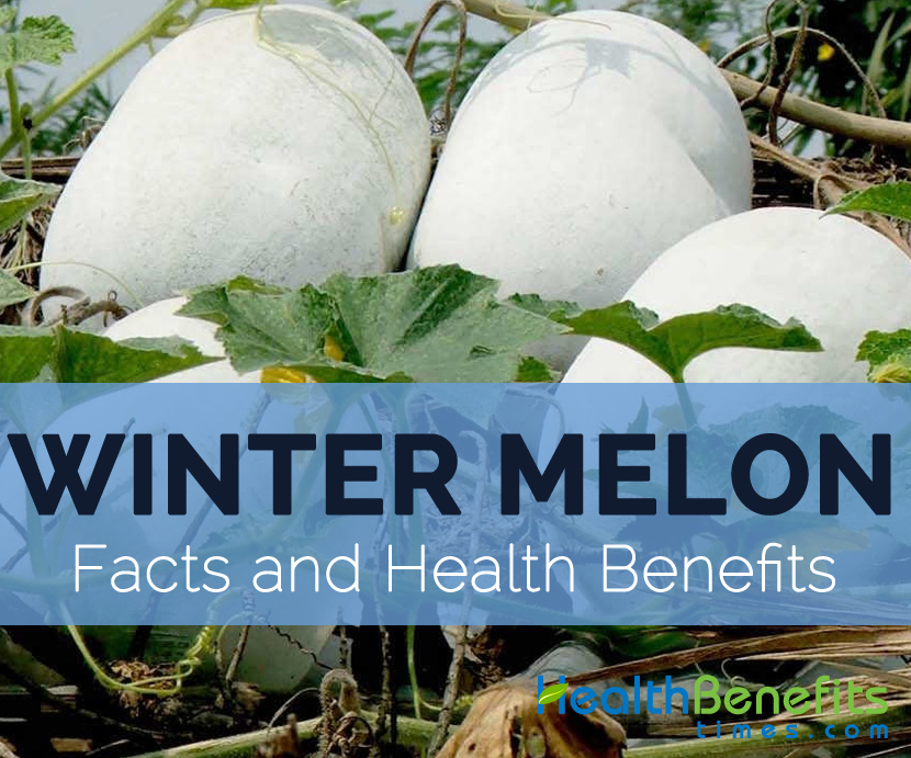 winter-melon-facts-and-health-benefits