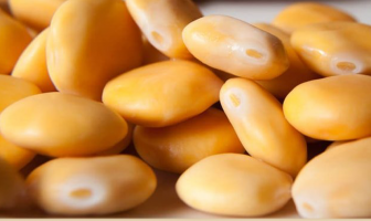 Health Benefits of Lupin Beans