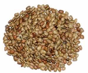 Health benefits of Horse Gram