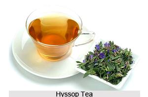 Health benefits of Hyssop Tea