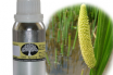 Health Benefits of Acorus calamus Essential Oil