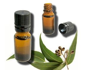 Health Benefits of Eucalyptus Essential Oil