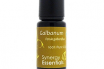 Health Benefits of Galbanum Essential Oil
