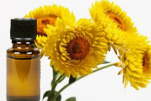 Health Benefits of Helichrysum Essential Oil