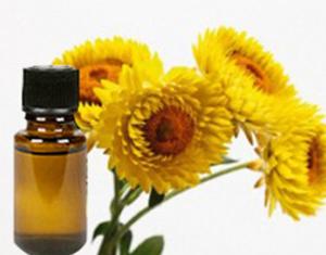 Health Benefits of Helichrysum Essential Oil