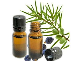 Health Benefits of Juniper Berry Essential Oil