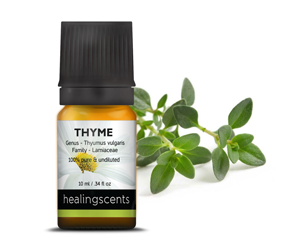 Health Benefits of Thyme Essential Oil