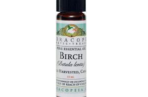 Health benefits of Birch Essential Oil