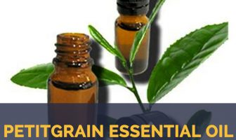 Petitgrain essential oil facts and benefits