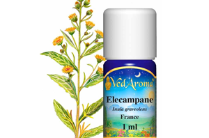 Health Benefits of Elecampane Essential Oil