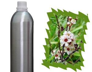 Health Benefits of Kanuka Essential Oil