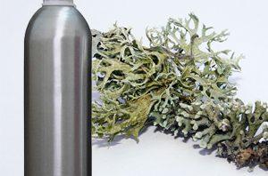 Health Benefits of Oak Moss Essential Oil