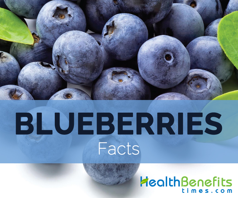Blueberries-facts