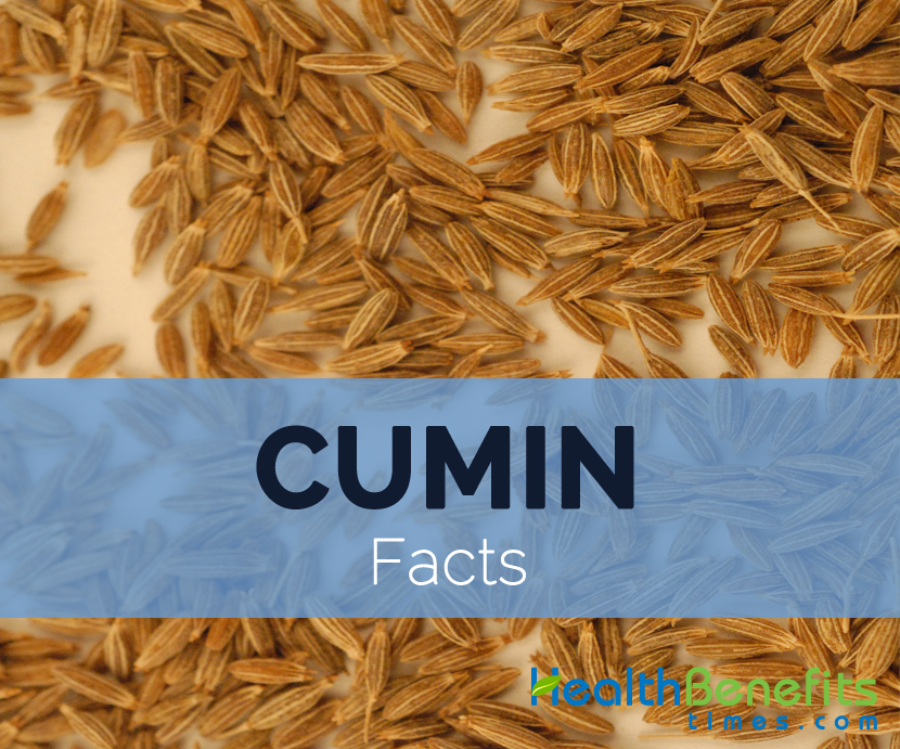 Cumin-facts