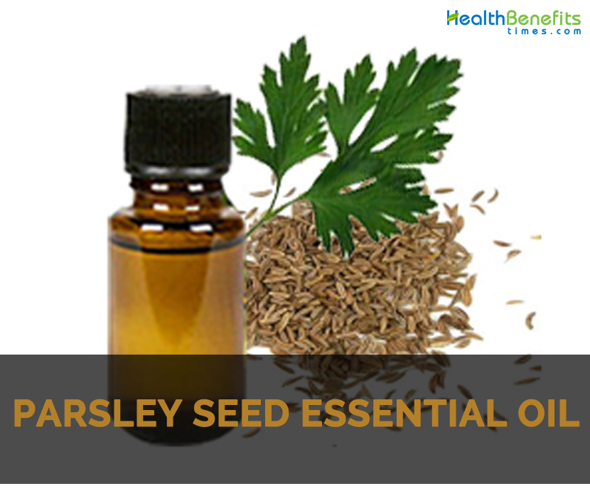 Parsley seed essential oil Facts and Health Benefits