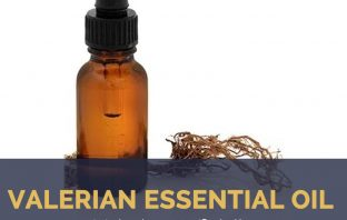 Valerian essential oil facts and health benefits