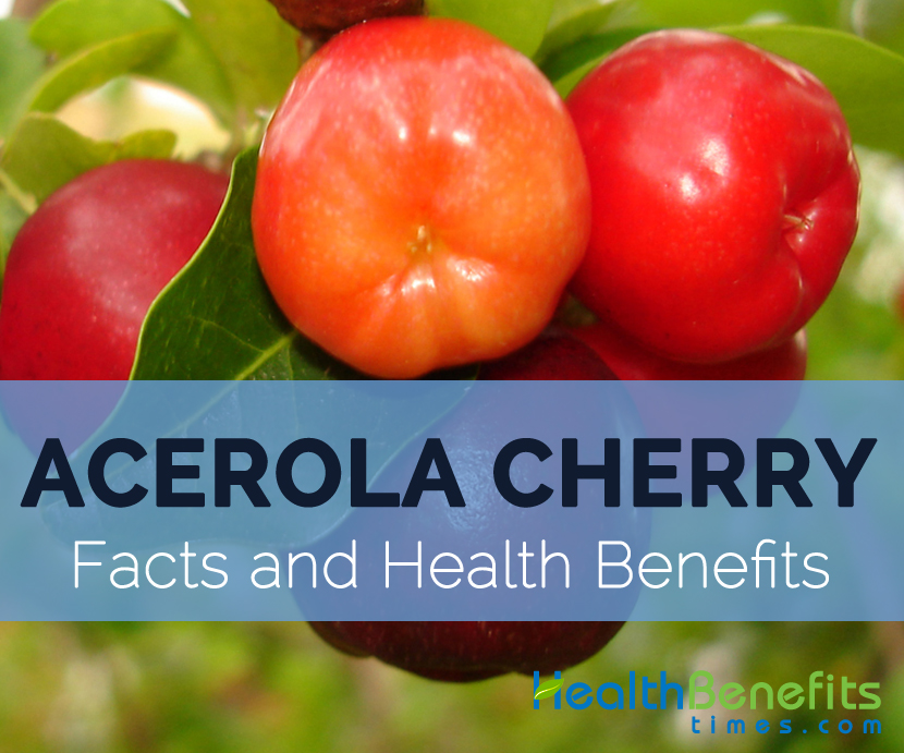 Acerola Cherry Facts, Health Benefits and Nutritional Value