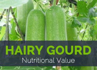 Hairy Gourd Nutritional Value