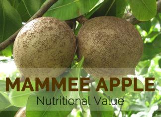 Mammee Apple Nutritional Value