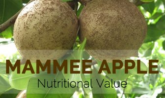 Mammee Apple Nutritional Value