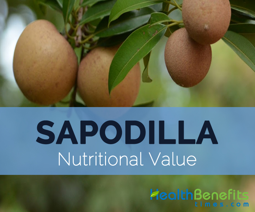 Sapodilla-nutritional-value