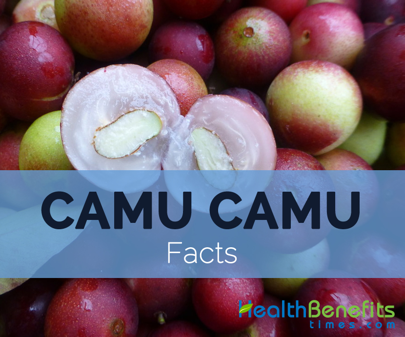 camu-camu-facts