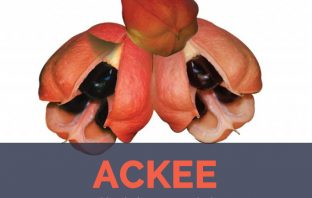 Ackee facts and health benefits