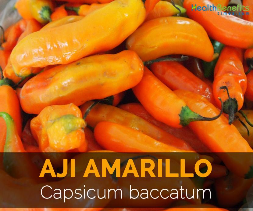 Aji-Amarillo---Capsicum-baccatum