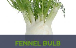 Fennel Bulb health benefits