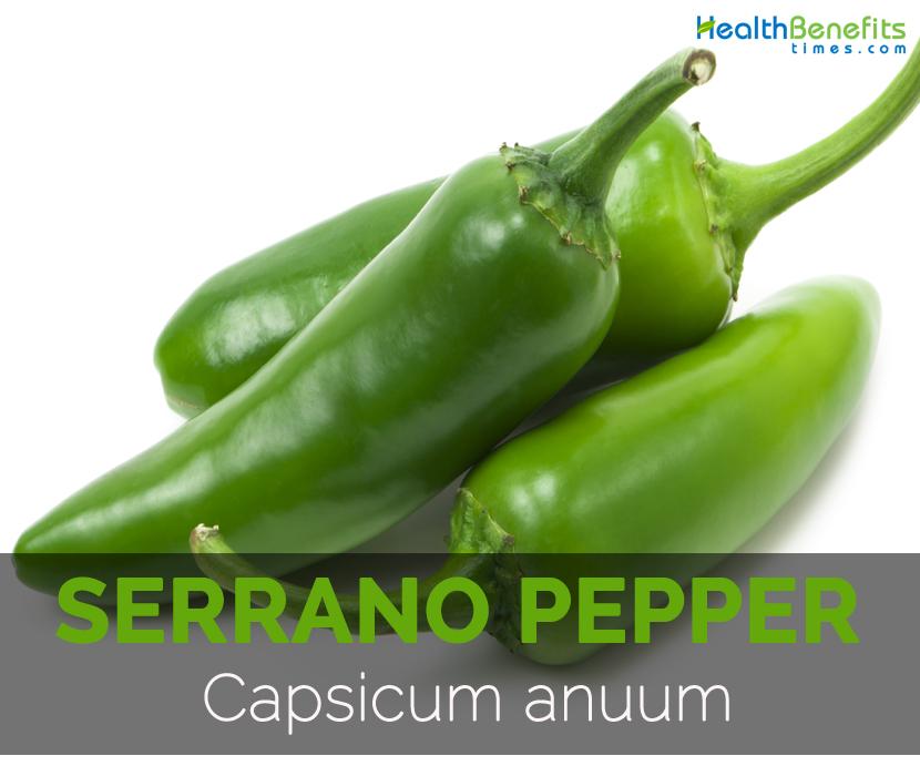 Serrano-pepper-Capsicum-anuum