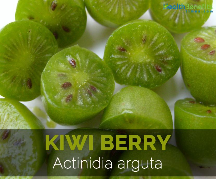Kiwi-berry-Actinidia-arguta