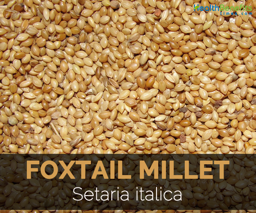 Thinai millet benefits of sexual dysfunction