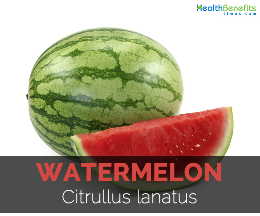 watermelon-citrullus-lanatus