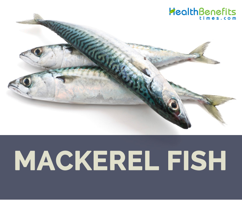 Mackerel fish health benefits and facts