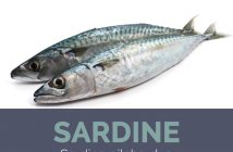 Sardine facts and health benefits