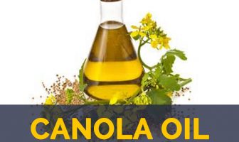 Canola oil facts and benefits