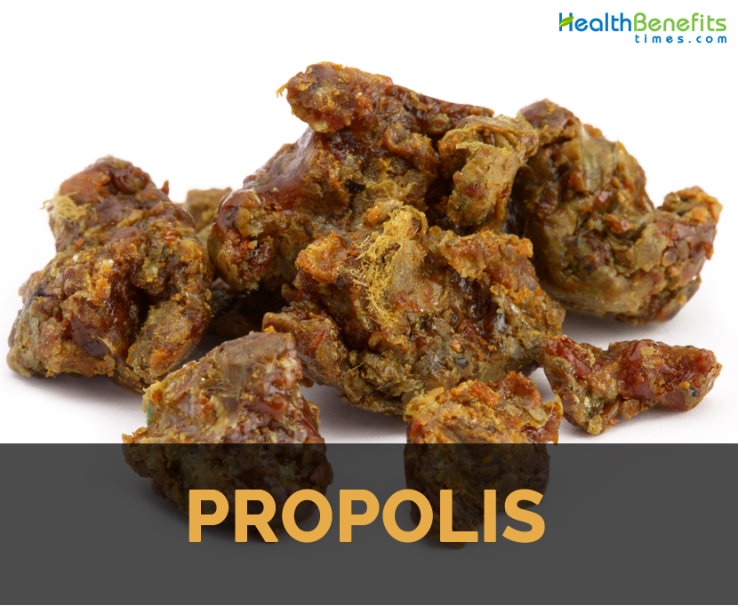Propolis Facts And Health Benefits