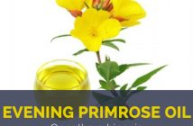 Evening primrose oil facts and benefits