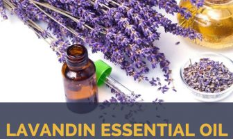 Lavandin essential oil facts and benefits