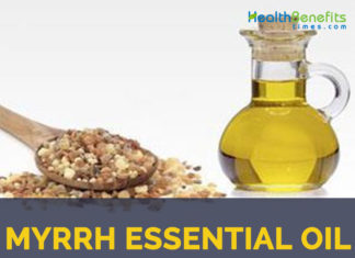 Myrrh essential oil facts and benefits