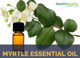Myrtle essential oil facts and benefits