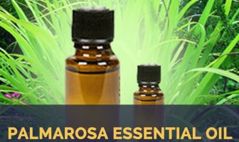 Palmarosa Essential Oil facts and benefits