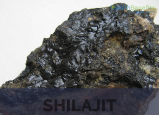 Shilajit facts, benefits and uses