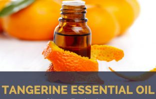 Tangerine essential oil facts and benefits