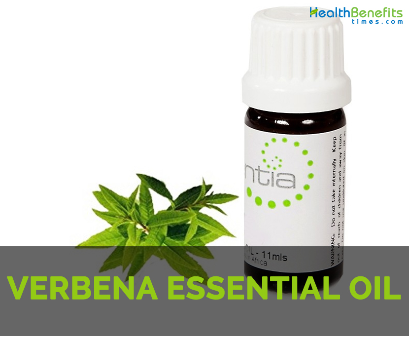 Verbena essential oil Facts and Health Benefits