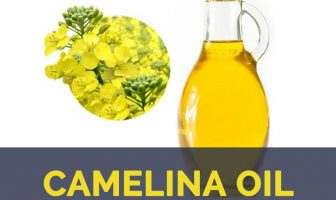 Camelina oil facts and health benefits